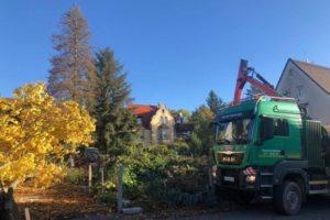 Lindengärten - Oktober 2019: Bauvorbereitung - Notwendige Vorarbeiten